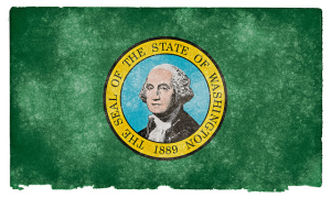 What do you think of Washington State's Internet sales tax plan?