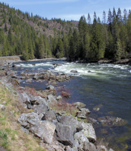 Rapids on the Clearwater River of Idaho along Highway 12 downstream of Lolo Pass. Picture taken in April. In the summer this stretch of the river is a favorite whitewater rafting area.
